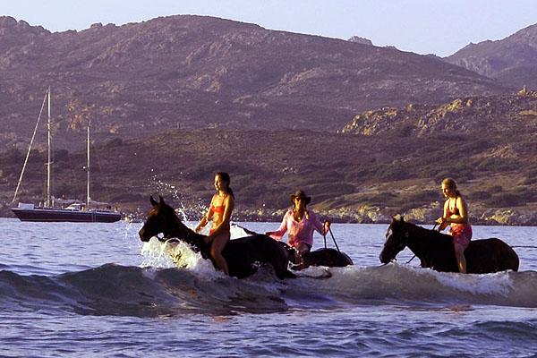Korsika Urlaub Steib Pur Reisen